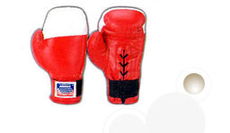 DUNLOP SHEET PADDING BOXING GLOVES