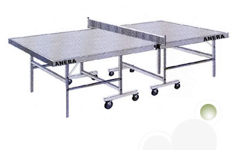 Table Tennis Table & Equipment
