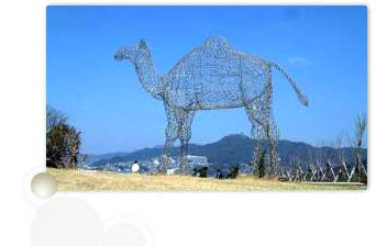 Wire Camel